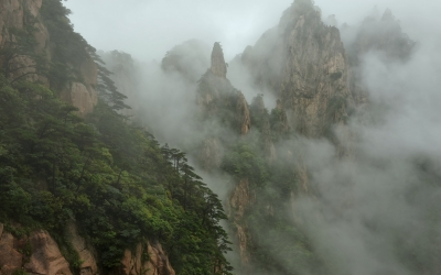 Nature_Forest_Forest_Mist_Fog_Jungle_40466_detail_thumb
