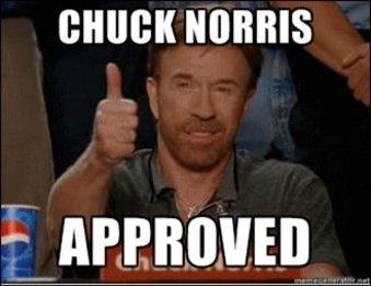 http://www.belloflostsouls.net/wp-content/uploads/2015/08/chuck-norris-thumbs-up-approves-Dcsaum.jpg