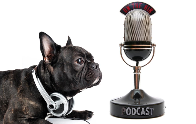 podcast dog