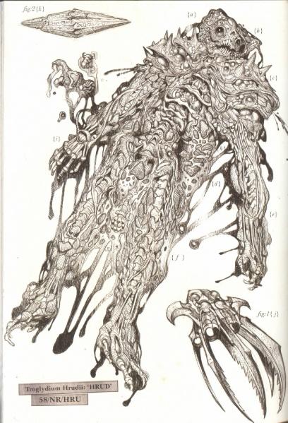 408px-DissectedHrud