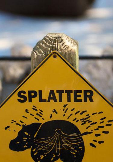 zoo-splatter