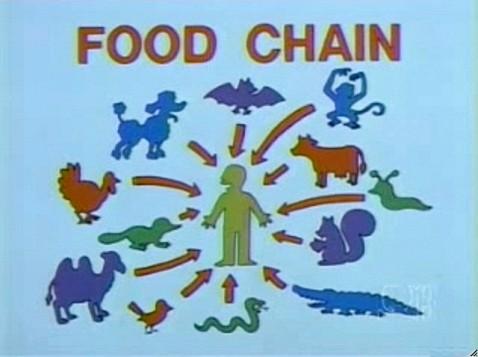 1a1 food chain
