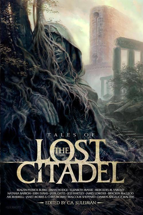 Lost-Citadel-image