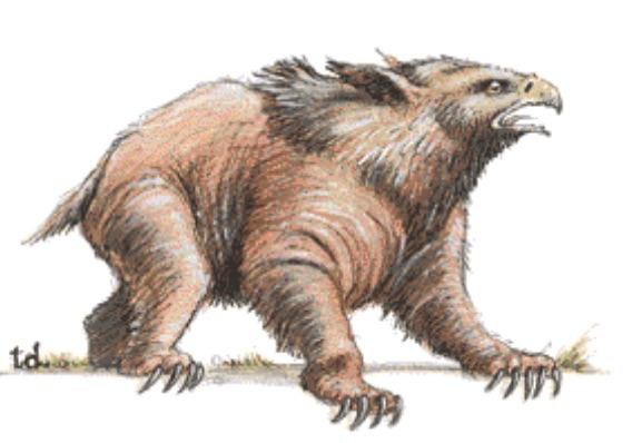 owlbear 2nd